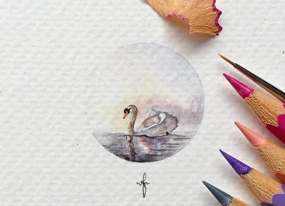 The Selfless Swan