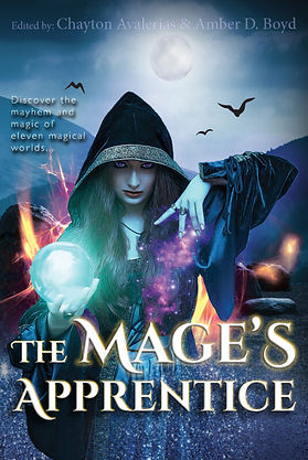 The-Mages-Apprentice-ebook-535x800.jpg