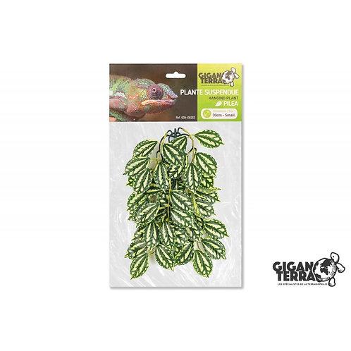 Plantes suspendues 30cm ref:252