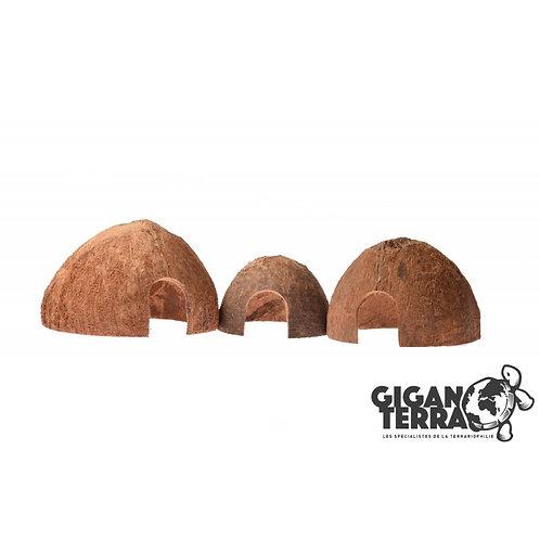 Set de 3 noix de coco