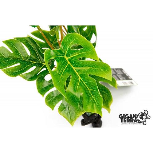 Plante sur pied 30cm ref:233