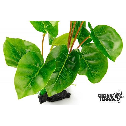 Plante sur pied 30cm ref:232