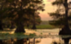 Cipar_16-500x315.jpg