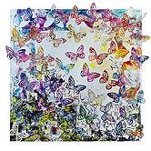 Butterflies Susanne Irving web image
