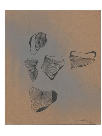 printing 40 (sketch) .jpg