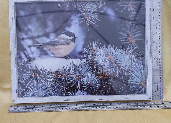 Light Up Bird in Evergreen Tree Picture
