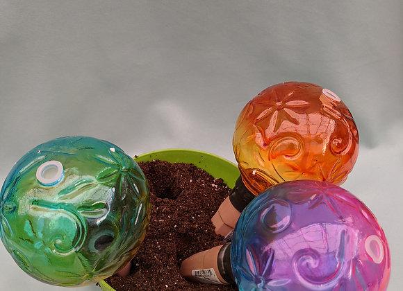 Embossed Glass Plant Watering Globe