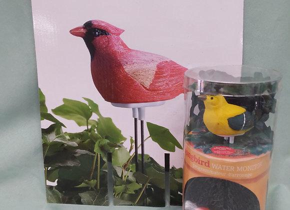 Songbird Water Monitor