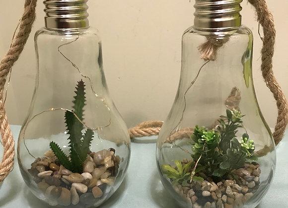 Light Bulb Cactus/Succulent Decor Light