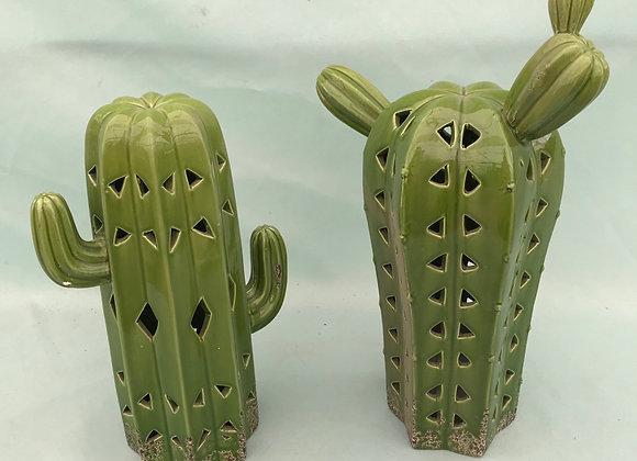 Light-Up Cactus