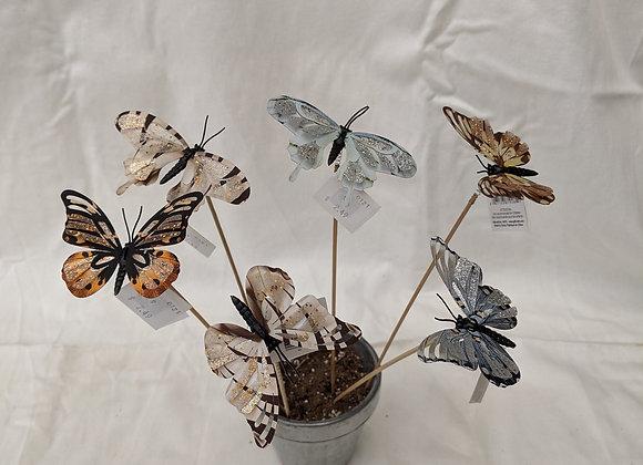 Butterfly Spike