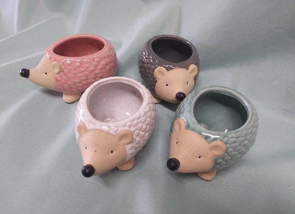 "2"" Hedgehog Pot"