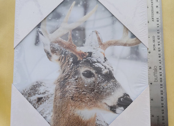 Light up Deer Picture