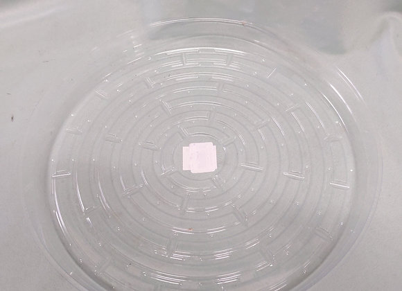 """12"""" Clear Plant Saucer"""