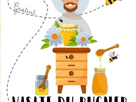 Visite du rucher de Tintigny le 25 mai