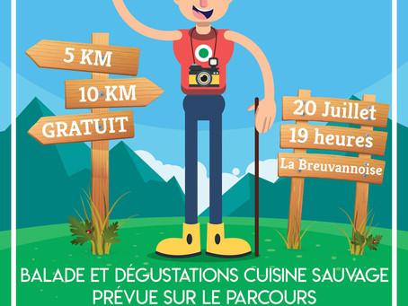 Balade et dégustations CUISINE SAUVAGE à Breuvanne la 20 juillet