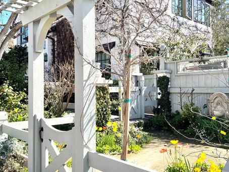 Simple Spring Gardening