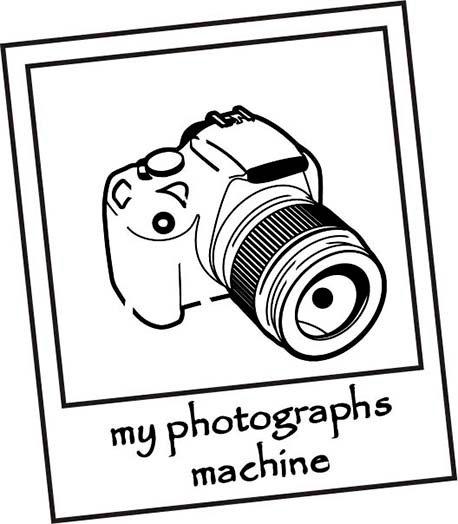 melhor foto do mundo, a máquina fotográfica loja online Infynita