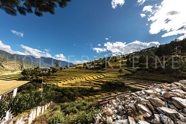 Scenic wide angle panorama view over the landscape of Bhutan, Himalaya.