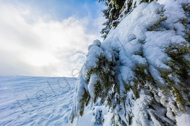 Snowy winter landscape at east german mountain Erzgebirge