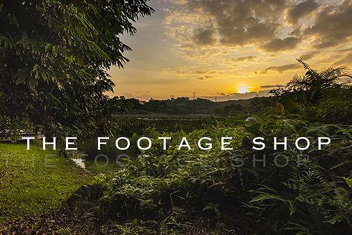 FOOTAGE.jpg