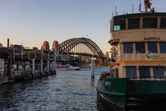 The green yellow ferries at Circular Quay, Sydney Australia.