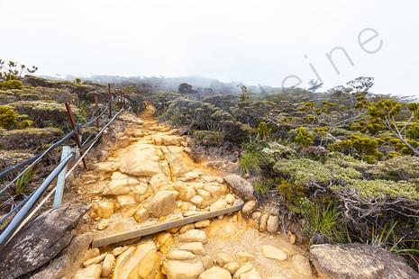 Climbing up the Mount Kinabalu, Sabah, Borneo, Malaysia