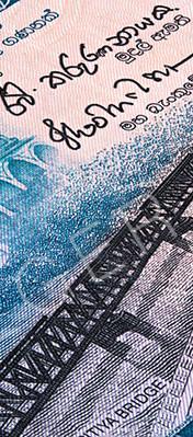 Macro photography of sri lanka 50 rupees money
