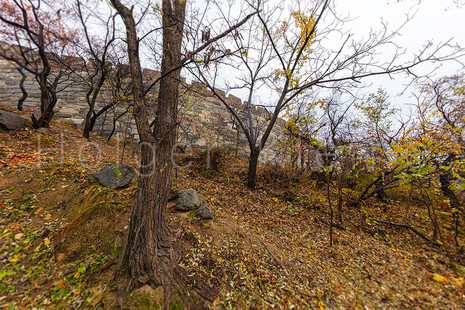 The Great Wall of China, the majestic large landmark of China in autumn