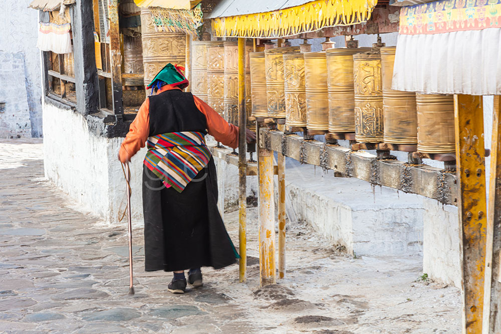 Old Tibetan woman walks past prayer drums and touches the drum with her right hand