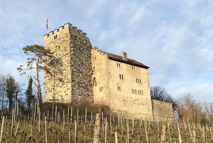 Schloss Habsburg Umbau und Restaurierung, EpprechtArchitekten AG, Aarburg