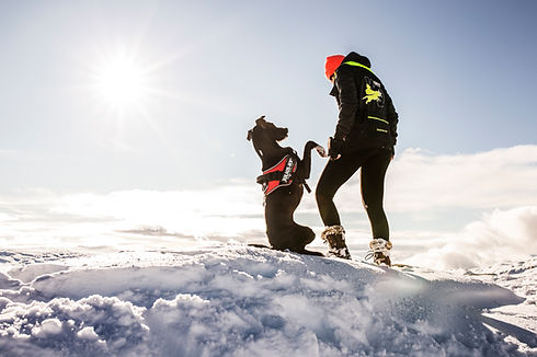 A dog wearing julius-k9 dog haress and his owner on an adventure