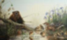 Entre voisins – Castor et famille de canards colverts, huile sur toile – Tous droits réservés © Monique Benoit