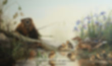 Good Neighbourhood – Beaver and Family of Mallard Ducks, oil on canvas – All rights reserved © Monique Benoit