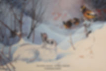 Winter Encounter –  Snowshoe Hare and Evening Grosbeaks, oil on canvas – All rights reserved © Monique Benoit