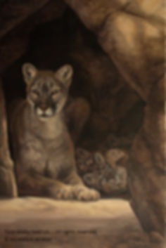 Cougar's Lair, oil on canvas – All rights reserved © Monique Benoit