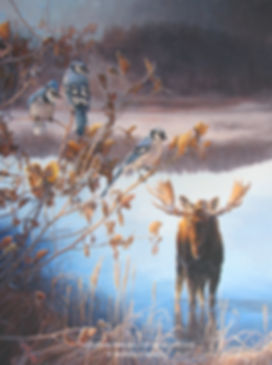 Early Morning at Grosbeak Lake – Bull Moose and Blue Jays, oil on canvas – All rights reserved © Monique Benoit