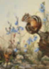 The Time for Giesecke's Bellflowers – Eastern Chipmunk, oil on canvas – All rights reserved © Monique Benoit