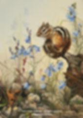 Au temps des campanules –  Tamia rayé, huile sur toile – Tous droits réservés © Monique Benoit