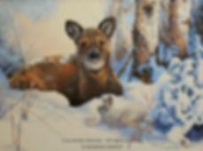 Le réveil de Boule de soie – Jeune cerf de Virginie et lièvre, huile sur toile – Tous droits réservés © Monique Benoit