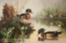 Les célibataires – Canards branchus mâles, huile sur toile – Tous droits résevés © Monique Benoit