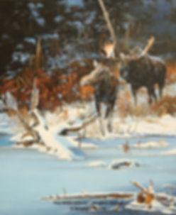 Fin d'automne – Couple d'orignaux, huile sur toile – Tous droits réservés © Monique Benoit