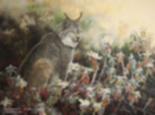 Early Morning Hoarfrost – Canada Lynx, oil on canvas – All rights reserved © Gisèle Benoit