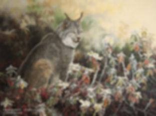Un matin de givre – Lynx du Canada, huile sur toile – Tous droits réservés © Gisèle Benoit