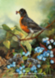 In the Undergrowth –  American Robins, oil on canvas – All rights reserved © Monique Benoit