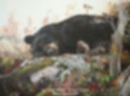 Chut! Je dors! – Ours noir et mésanges à tête brune, huile sur toile – Tous droits réservés © Monique Benoit