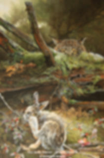 Situation périlleuse – Lièvre d'Amérique et lynx du Canada, huile sur toile – Tous droits réservés © Monique Benoit