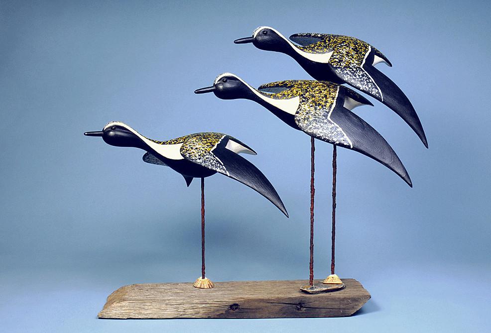 Moorland Golden Plovers