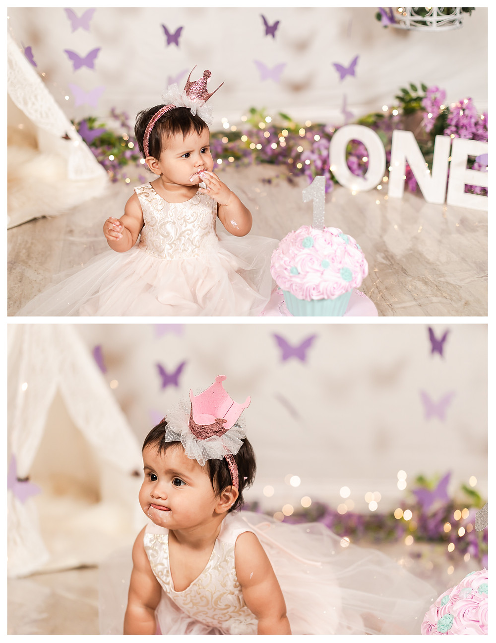 Butterfly Theme Cake Smash Purple and Pink Boho Style First Birthday Photosession Joliet photographer