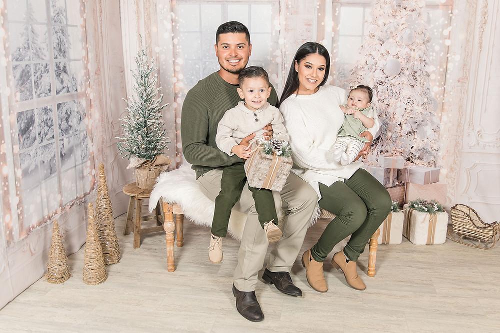 Christimas family mini session joliet family photographer